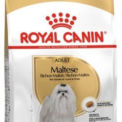 Royal Canin Maltese Adult karma sucha dla psów dorosłych rasy maltańczyk 500g-1