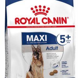 Royal Canin Maxi Adult 5+ karma sucha dla psów starszych, od 5 do 8 roku życia, ras dużych 15kg-1