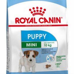 Royal Canin Mini Puppy karma sucha dla szczeniąt, od 2 do 10 miesiąca życia, ras małych 4kg-1