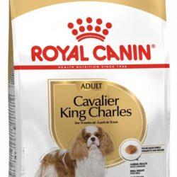 Royal Canin Cavalier King Charles Adult karma sucha dla psów dorosłych rasy cavalier king charles spaniel 1,5kg-1