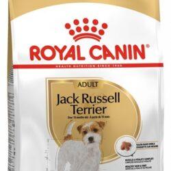 Royal Canin Jack Russell Terrier Adult karma sucha dla psów dorosłych rasy jack russell terrier 500g-1