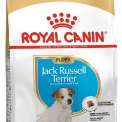 Royal Canin Jack Russell Terrier Puppy/Junior karma sucha dla szczeniąt do 10 miesiąca, rasy jack russell terrier 1,5kg-1