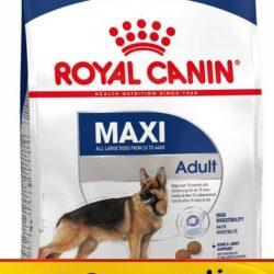 Royal Canin Maxi Adult karma sucha dla psów dorosłych, do 5 roku życia, ras dużych 18kg (15+3kg)-1