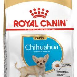 Royal Canin Chihuahua Puppy/Junior karma sucha dla szczeniąt do 8 miesiąca, rasy chihuahua 1,5kg-1