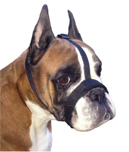 Grande Finale Kaganiec dla psa pekińczyk rozmiar 5 (26-33cm)-1
