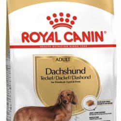 Royal Canin Dachshund Adult karma sucha dla psów dorosłych rasy jamnik 1,5kg-1