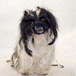 Grande Finale Kaganiec dla psa pekińczyk rozmiar 1 (12-20cm)-1
