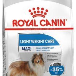 Royal Canin Maxi Light Weight Care karma sucha dla psów dorosłych, ras dużych z tendencją do nadwagi 10kg-1