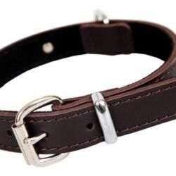 Dingo Obroża skórzana natłuszczana podszyta miekką skórą 1,6x35cm brązowa-1