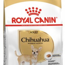 Royal Canin Chihuahua Adult karma sucha dla psów dorosłych rasy chihuahua 1,5kg-1