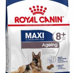 Royal Canin Maxi Ageing 8+ karma sucha dla psów dojrzałych, po 8 roku życia, ras dużych 15kg-1