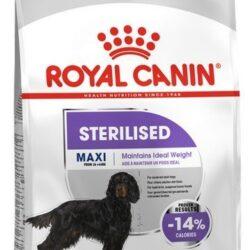 Royal Canin Maxi Sterilised karma sucha dla psów dorosłych, ras dużych, sterylizowanych 9kg-1