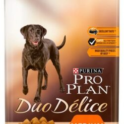 Purina Pro Plan Duo Delice Adult Medium & Large Wołowina & Ryż 10kg-1