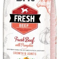 Brit Fresh Dog Puppy Large Beef & Pumpkin 12kg-1