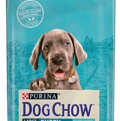 Purina Dog Chow Puppy Large Breed Indyk 14kg-1