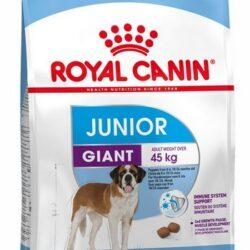 Royal Canin Giant Junior karma sucha dla szczeniąt od 8 do 18/24 miesiąca życia, ras olbrzymich 15kg-1