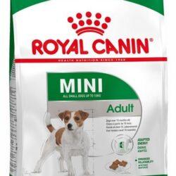 Royal Canin Mini Adult karma sucha dla psów dorosłych, ras małych 8kg-1