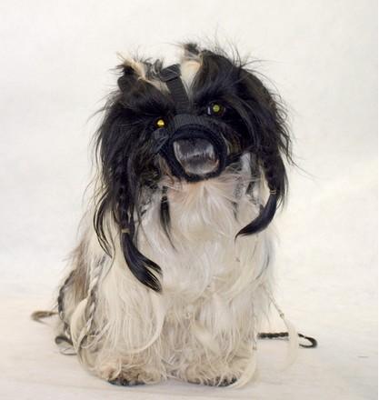 Grande Finale Kaganiec dla psa pekińczyk rozmiar 4 (22-30cm)-2