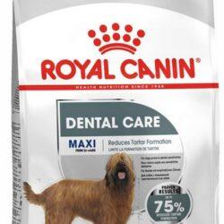 Royal Canin Maxi Dental Care karma sucha dla psów dorosłych, ras dużych dla higieny zębów 9kg-1