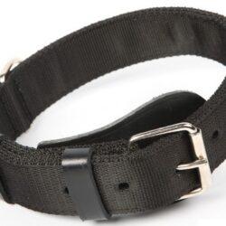 Dingo Obroża specjalna z taśmy 4,0x55-65cm czarna-1