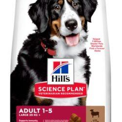 Hill's Science Plan Adult Large Jagnięcina & Ryż 14kg-1