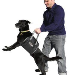 Outward Hound Uprząż do asystowania psu [21005]-1